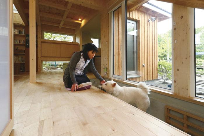 デッキに面した窓辺にドッグスベースを設置。寝る場所や折り畳みステップなど配慮したプラン